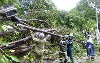 Các đơn vị quân đội tích cực khắc phục hậu quả bão số 1