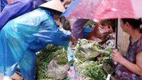 Giá thực phẩm sau ngày bão, các bà nội trợ đi chợ ngày mưa bão cần biết thông tin này