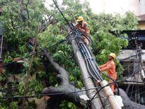 Thợ điện Thủ đô thức trắng đêm khôi phục lưới điện sau bão