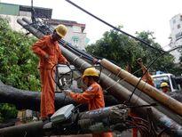 EVN Hà Nội khôi phục lưới điện sau bão