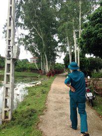 Chuyện lạ ở Vĩnh Phúc: Bão làm đổ cây, dân bị yêu cầu nộp phạt