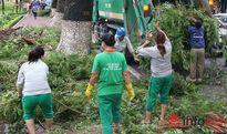 Sau bão, gần 800 tấn rác trên phố của Thủ đô đã được thu dọn
