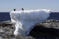 Thế giới huy động 81 tỷ USD đối phó với biến đổi khí hậu