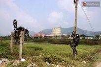 Nghệ An: Hai 'cẩu tặc' đánh nam sinh 18 tuổi nhập viện sau khi trộm chó bất thành