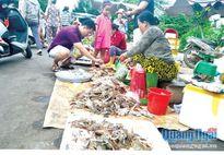 Giá thủy, hải sản miền Trung tăng theo mùa nắng nóng