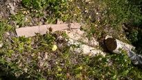 Vụ rừng Hòn Hèo bị tàn sát, thị xã Ninh Hòa (Khánh Hòa): Thừa nhận rừng bị 'xẻ thịt', 'lơ' xử lý trách nhiệm