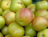 """Những loại trái cây Trung Quốc dễ """"đội lốt"""" nhãn mác Việt Nam"""