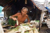 Cá chết hàng loạt trên sông Mã do bị sặc bùn