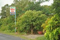 Điều tra vụ giao cấu trẻ em ở Cà Mau