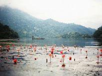 Những hồ nước đẹp dọc miền đất nước