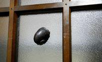 Loài 'ốc sên màu đen' kì lạ khiến quân đội Mỹ phải học tập