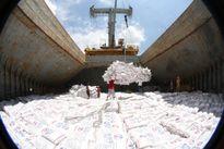 Việt Nam giảm mạnh xuất khẩu gạo sang Trung Quốc