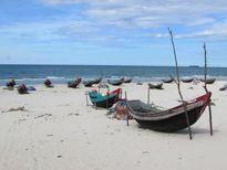 Ngư dân đã lác đác ra khơi sau công bố 'sức khỏe' của biển