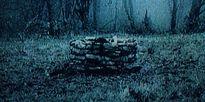 Vòng tròn oan nghiệt 'Rings' chính thức hồi sinh với trailer khiến người xem thót tim