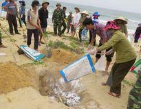 Công bố kết quả kiểm nghiệm sự cố cá chết vào đầu tháng 9