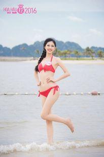 Hoa hậu Việt Nam 2016: Top 5 ứng viên sáng giá nhất cho chiếc vương miện