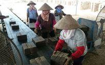 Cưỡng chế phá dỡ lò gạch ở Sóc Sơn (Hà Nội): Thấp thỏm bên miệng lò!