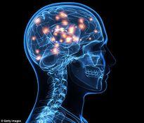 Người thông minh có sóng não khác thường