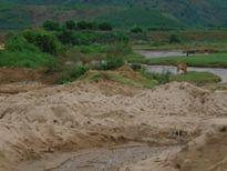 Cát tặc lộng hành trên Sông Ciện, xã Đắk Trăm
