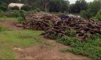 UBND Phúc Yên phản hồi kiến nghị về Dự án Nghĩa trang Liên Đài Viên