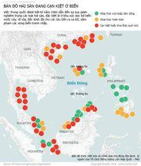 Trung Quốc hủy hoại Biển Đông không thương tiếc, nghề cá trước nguy cơ sụp đổ