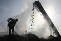 Giới bảo hiểm kêu gọi G20 cắt giảm dần trợ cấp cho nhiên liệu hóa thạch