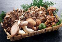 Nấm đặc biệt hiệu quả khi dùng thay thế thịt đỏ