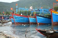 Nhiều tàu thuyền gặp sự cố do bão