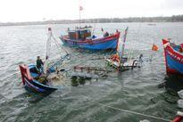Nhiều tàu bị sóng lớn đánh chìm, 1 ngư dân mất tích trong bão số 4