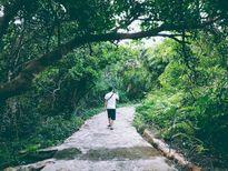 Côn Đảo hoang sơ trong mắt cô gái Sài Gòn