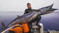 Bắt được 'quái vật' cá thu khổng lồ