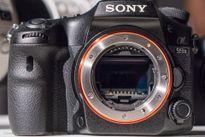 Một số hình ảnh thực tế Sony A99 II: BSI-CMOS 42,4MP, chống rung 5 trục, quay 4K