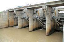Vì sao thủy điện Gia Lai thành ẩn họa?