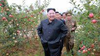Diện mạo Internet chưa đầy 30 trang web của Triều Tiên