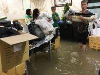 Nước tràn vào biệt thự Mr Đàm: Huy động 3 máy bơm, gần 20 người khắc phục
