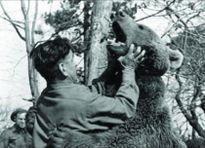 Hạ sĩ gấu đặc biệt của Ba Lan trong Thế chiến II