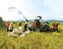 Thách thức trong quản trị cung ứng, vận tải và logistics ngành nông nghiệp