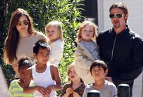 Angelina Jolie tạm thời giành quyền nuôi 6 con
