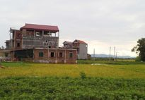 Xây nhà trái phép trên đất nông nghiệp ở Hải Thượng (Tĩnh Gia, Thanh Hóa): Kiểm tra xong 'để đấy'