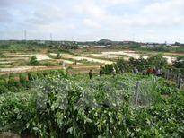 Đắk Nông: Một thanh niên chết tại chỗ do nổ mìn tự chế