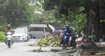 Áp thấp nhiệt đới gây thiệt hại nặng ở Quảng Trị và Thừa Thiên- Huế