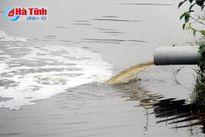 Sớm xử lý ô nhiễm ở Trung tâm Giống chất lượng cao Kỳ Phong