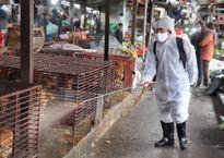 Thực hiện hiệu quả tiêu độc khử trùng môi trường trong tháng 11