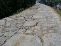 Thiệu Hóa (Thanh Hóa): Đê sông Chu 'oằn mình' trước nạn xe quá tải!