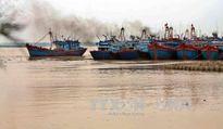Nam Định dồn toàn lực chống bão số 7