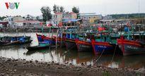 100% tàu thuyền của Đồ Sơn đã cập bến an toàn tránh bão số 7