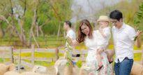 Check-in cánh đồng cừu đẹp ngất ngây ở Hà Nội để có ảnh cực chất