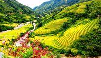 Đưa du lịch thành kinh tế mũi nhọn: Quá nhiều việc cần giải quyết