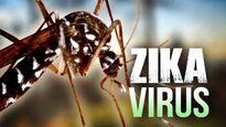Việt Nam ghi nhận 9 trường hợp nhiễm virus Zika