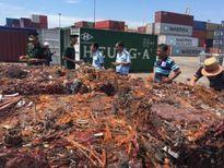 Khởi tố vụ xuất lậu 139 tấn đồng, nhôm qua cảng Đà Nẵng